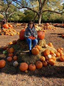 pumpkins, texas, travel wallet