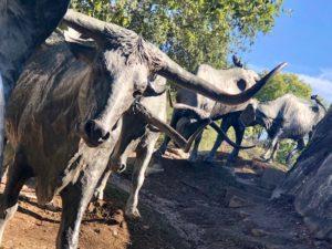 scluputre, cattle, travel wallet