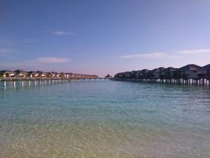 maldives by travel wallet in bridgnorth